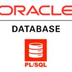 Oracle 11g PLSQL