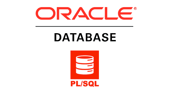 Oracle 11g PLSQL -Introduction to Oracle 11g PL/SQL Practice Question and Answers