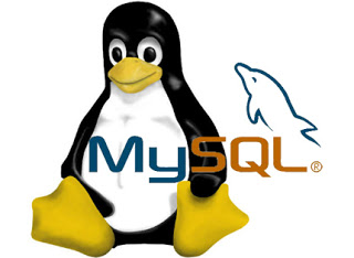 Install MySQL With Package Manager