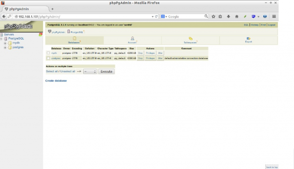 phpPgAdmin dashboard