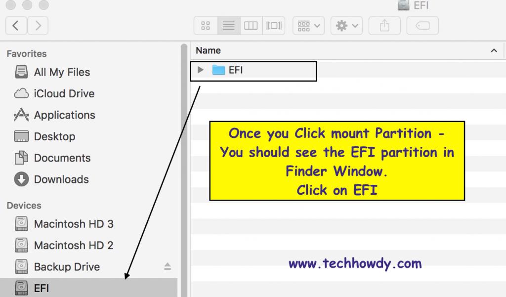 EFI Partion on Hackintosh